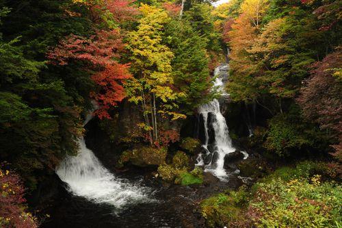 Nikko Fall